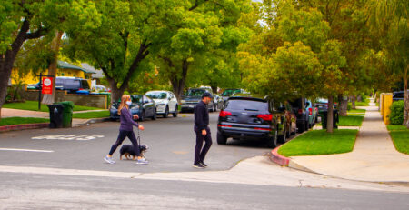 San Jose, CA - Woman Killed in Pedestrian Accident at Tully Rd & La Ragione Ave